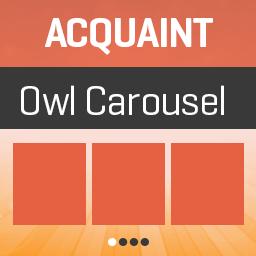 Acquaint Owl Carousel