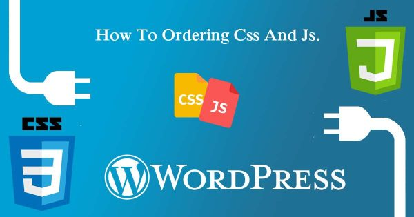 Add Css And Js Option Page Wise