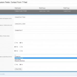 Advanced Custom Fields – Contact Form 7 Field