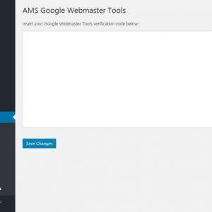 AMS Google Webmaster Tools