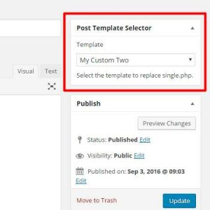AMS Single Post Template Selector
