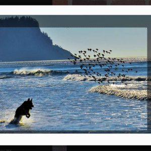 Background Image Cropper