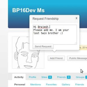 BuddyPress Extended Friendship Request