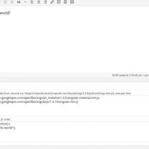 Custom Javascript Inserter