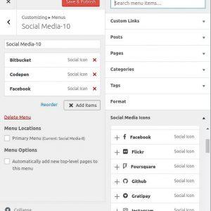 Customizer Social Icons