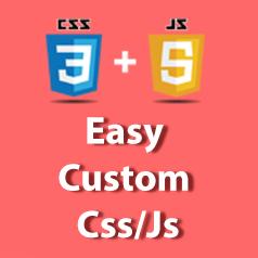 Easy Custom Css/Js