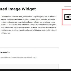 Epnb Featured Image Widget