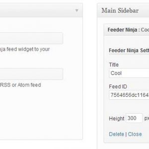 Feeder Ninja: Create and add RSS & Social feeds to your website on-the-fly