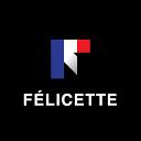 Felicette Pedigree Litters