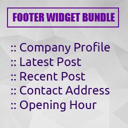 Footer widget bundle