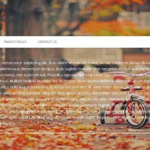 Full Screen (Page) Background Image Slideshow
