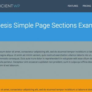 Genesis Simple Page Sections
