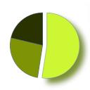 Goo Pie Chart