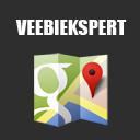 Google Maps VE