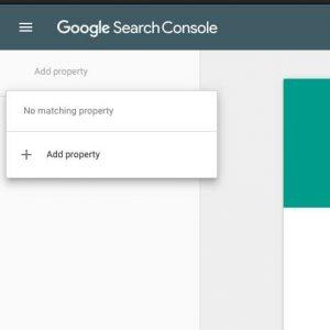 Google Site Verification plugin using Meta Tag