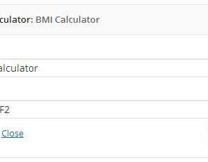 Healthy BMI Calculator