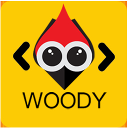 Woody ad snippets – Insert Header Footer Code