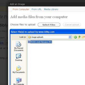 Make Filename Lowercase