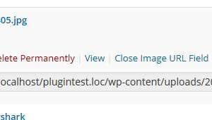 Media Item URL