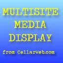 Multisite Media Display