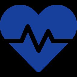 WP Health (Formerly My WP Health Check)