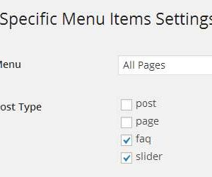 Page Specific Menu Items