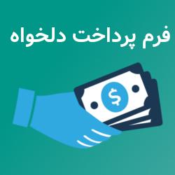 پلاگین پرداخت دلخواه