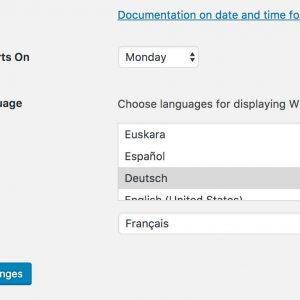 Preferred Languages