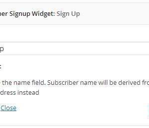 Simple Subscriber Signup Widget
