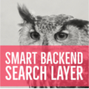Smart Backend Search Layer