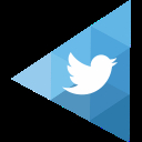 The Twitter Profile