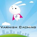 Varnish/Nginx Proxy Caching