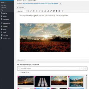 IBM Watson Content Hub Asset Palette