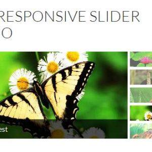 Wd-easy-responsive-slider-xoss