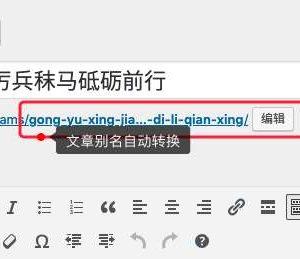 Wenprise Pinyin Slug
