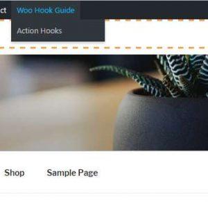 Woo Visual Hook Guide
