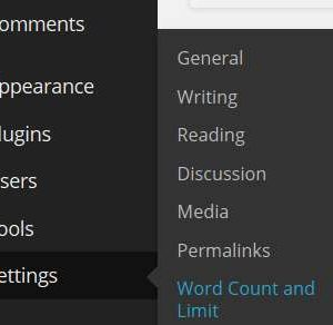 WordPress Word Count and Limit