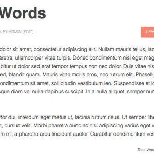 Wordcount Pro