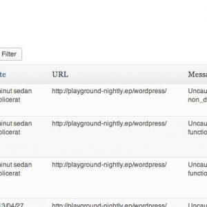 WP JavaScript Error Logger