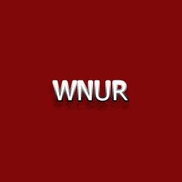 Wp NssUser Register