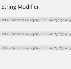 WP Version in Query String Modifier