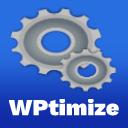 WPtimize